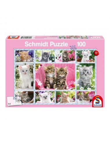 Schmidt Γατάκια 100pcs (56135)