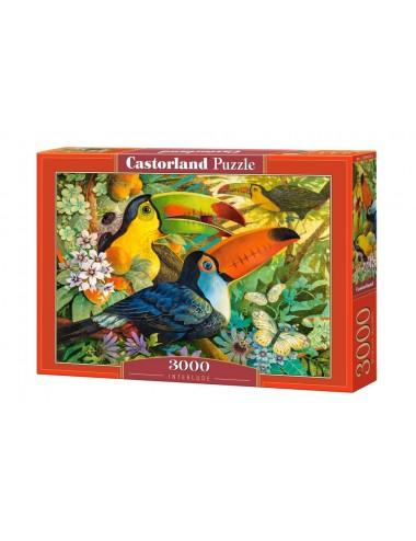 Castorland Interlude 3000 ΚΟΜΜΑΤΙΑ C-300433-2
