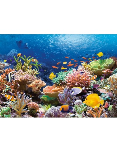 Castorland Coral Reef Fishes 1000 ΚΟΜΜΑΤΙΑ C-101511-2