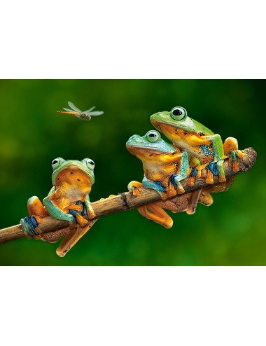 Castorland The Frog Companions 500 ΚΟΜΜΑΤΙΑ B-52301