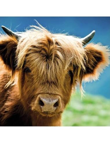 Heye Highland Cow 1000pcs (29745)