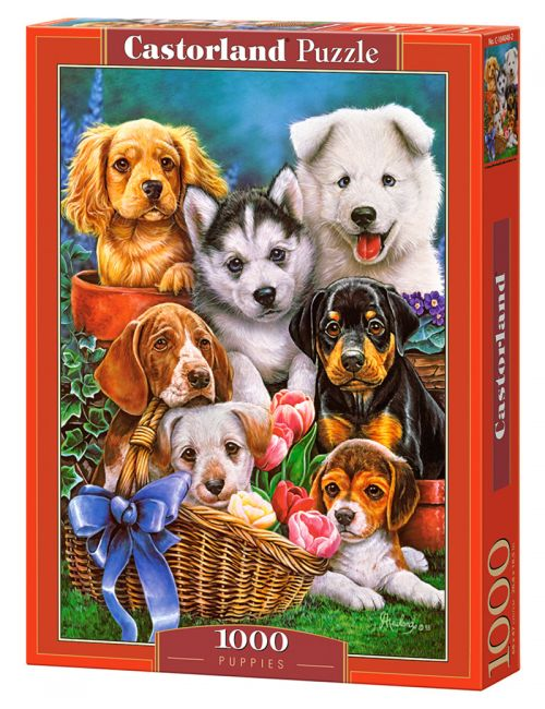 Castorland Puppies 1000 ΚΟΜΜΑΤΙΑ C-104048