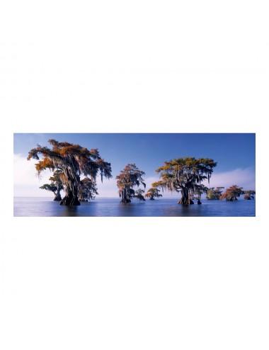 Heye Humboldt Panorama: Κυπαρίσσια 1000pcs (29607)