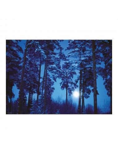 Heye Magic Forests: Πανσέληνος 500pcs (29625)