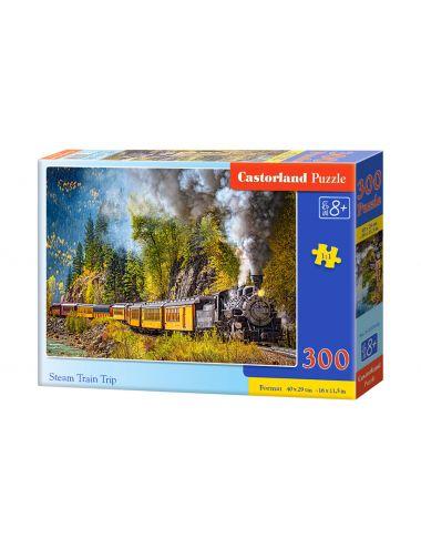 Castorland Steam Train Trip...
