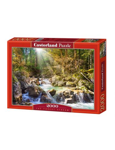 Castorland The forest...