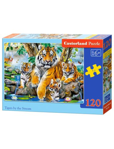 Castorland Tigers by the...
